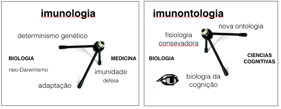 Figura 1. A imunologia tem um pé na Medicina (imunidade, defesa) e dois pés da Biologia neo-Darwinista: o papel central dos genes na atividade biiológica, e a adaptação. A imunontologia tem um pé na Biologia experimental (a fisiologia conservadora da atividade imunológica); um pé nas ciências cognitivas (a biologia do conhecer de Maturana); e um pé na análise da prática da ciência (a nova ontologia de Pickering). Junto à biologia da cognição acrescento ainda um olho (um olhar humano) para assinalar a presence inarredável do observador.