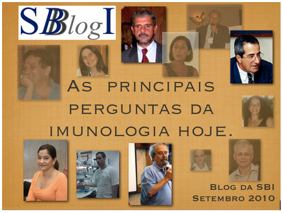enquet-blog-sbi-2010