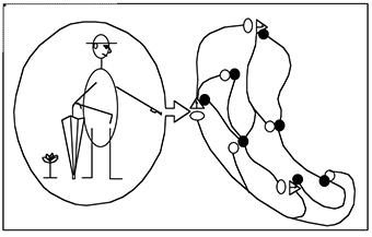 Maturana-Que é ver-Fig-1