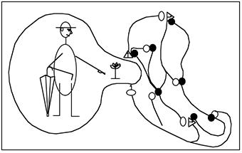 Maturana-Que é ver-Fig-2