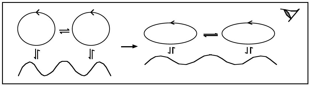 Figura 2: Dois sistemas, dois seres vivos, como um aluno e um professor, que vivem interações recorrentes, mudam de forma coerente. Para um observador desta dinâmica, parecerá que houve acomodação, adaptação ou aprendizagem.